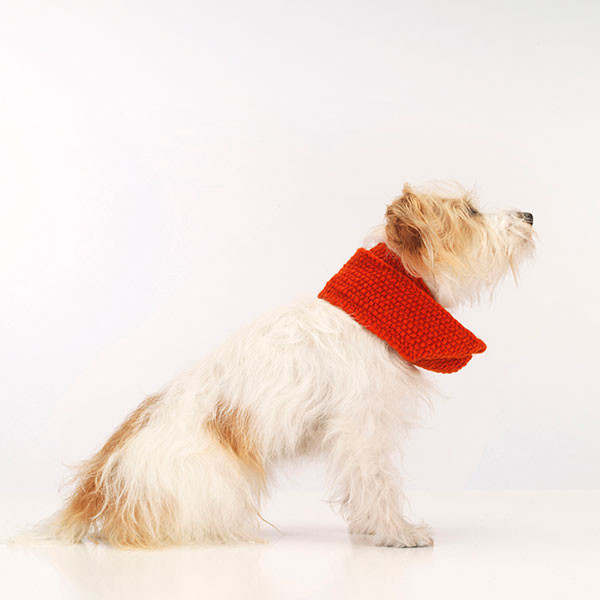 dog_scarf_snood_Love_My_Dog_02
