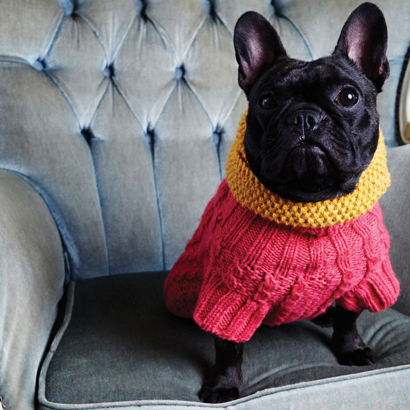 dog_scarf_snood_Love_My_Dog_03
