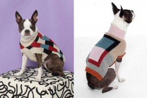 modern_graphic_dog_sweater_Dusen_Dusen_01