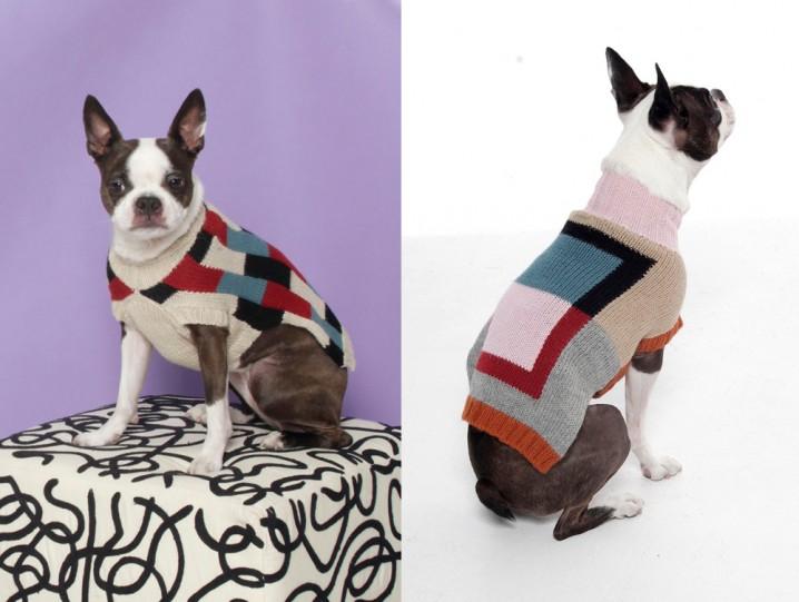 modern_graphic_dog_sweater_Dusen_Dusen_01