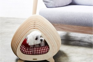 modern_plywood_doghouse_POTE_01