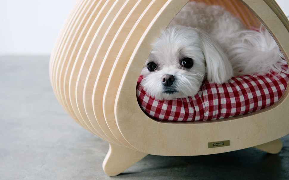 modern_plywood_doghouse_POTE_03