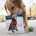 thedogist