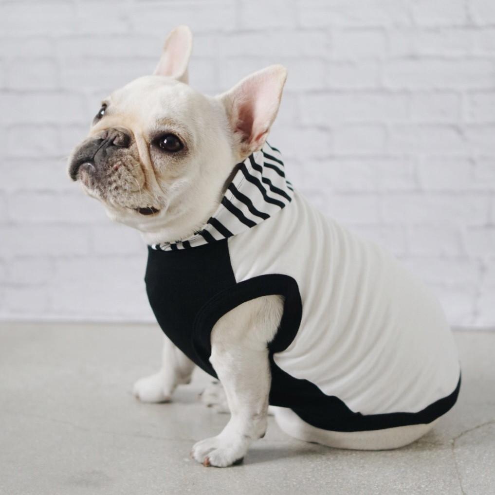 Bulldog Clothing Brand