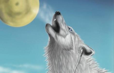 azi-wolf