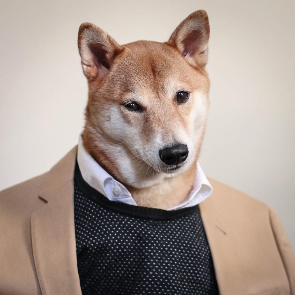 mensdog2