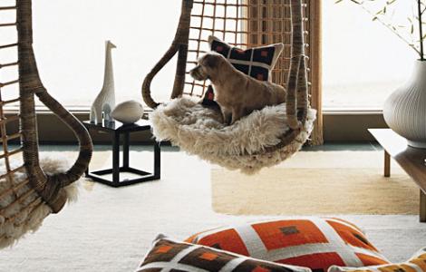 Jonathan-Adlers-Dog-LiberaceDog-Swing-Interior-Design-Hound
