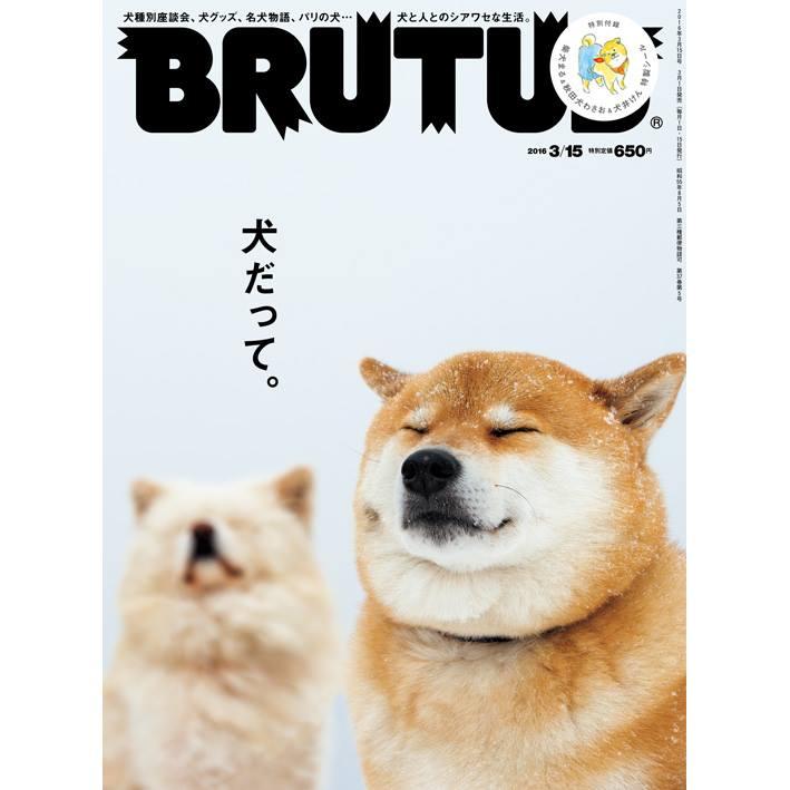 brutustop