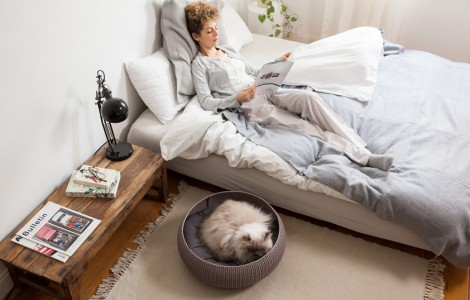 cozy-pet-bed3