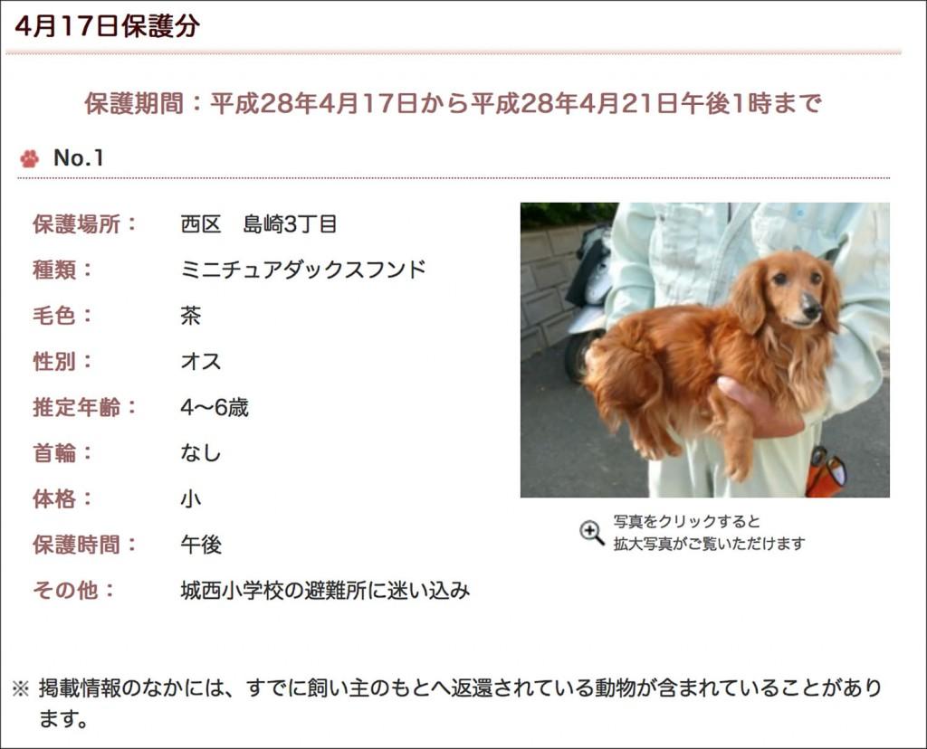 0417-1-kumamoto-aigo-aiken-search