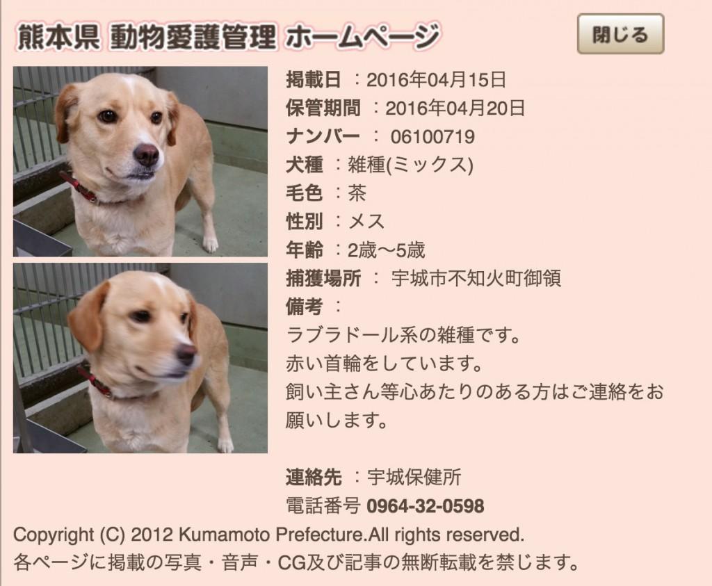 1-kumamotoken-aiken-search