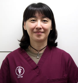 VCJ-Hitomi-Fujii
