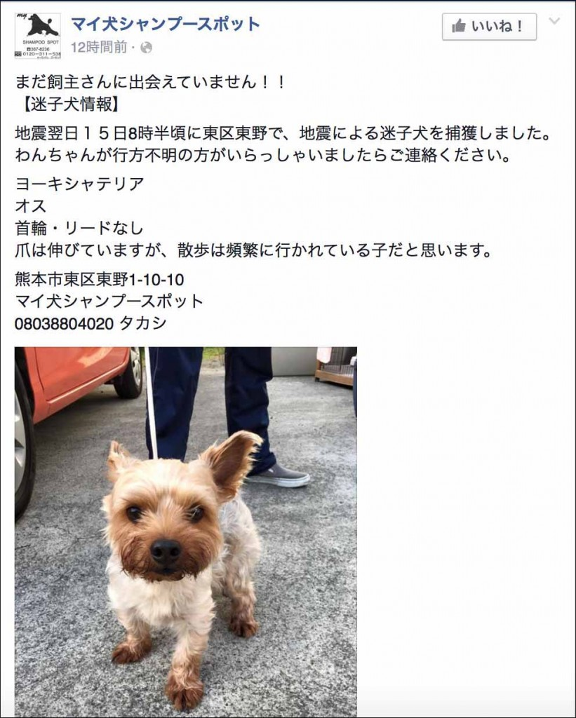 aiken-search-fb1