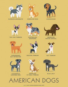 american-dogs-illustration-by-lili-chin