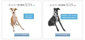 dec_dogs