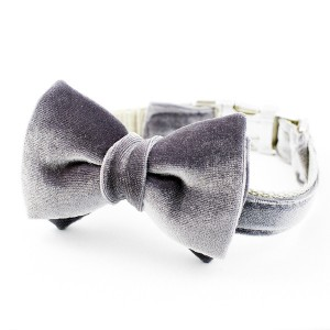 dog-bow-tie-collar-grey-1_grande