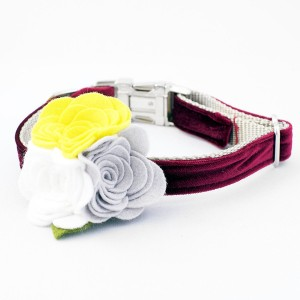 dog-flower-collar_b307c4e1-6024-4c19-aab9-8482e6ec34a3_grande
