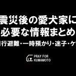 index-doglover-kumamoto