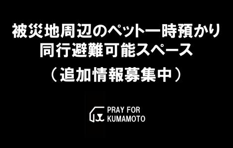 kumamoto-pet-azukari-doukou