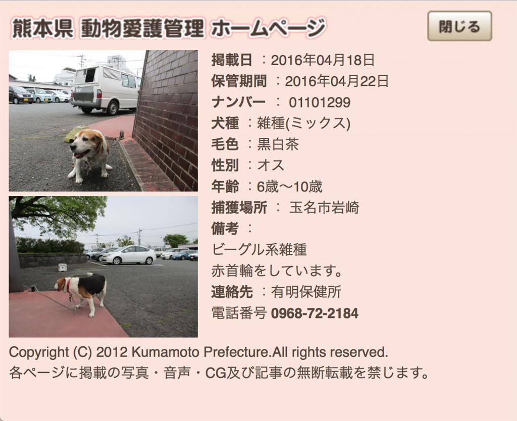 kumamotoken-aiken-search-0418-2