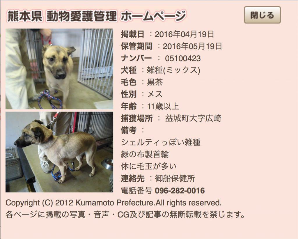 kumamotoken-aiken-search-0419-2