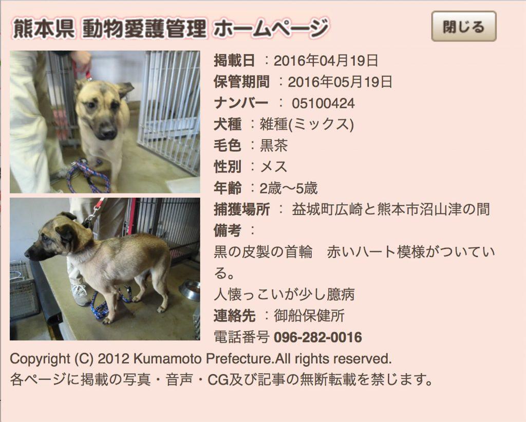 kumamotoken-aiken-search-0419-3
