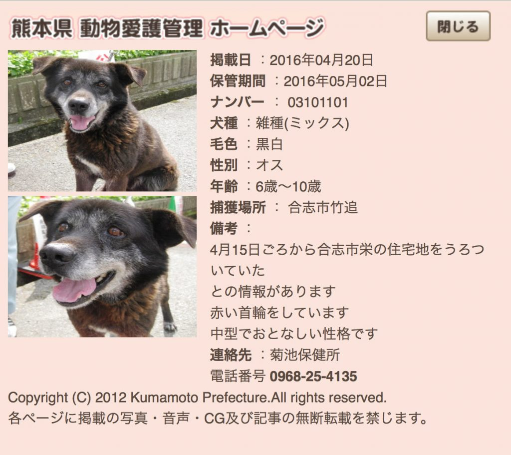 kumamotoken-aiken-search-0420-1