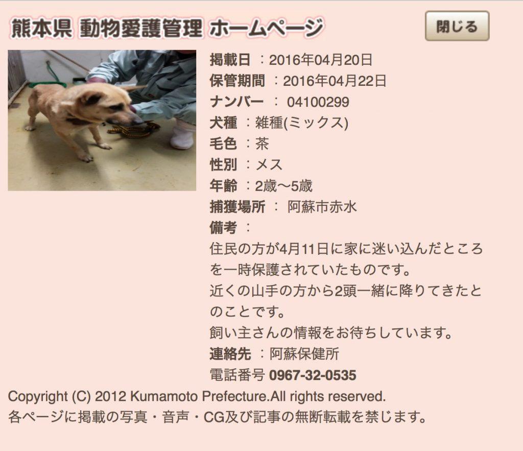 kumamotoken-aiken-search-0420-4