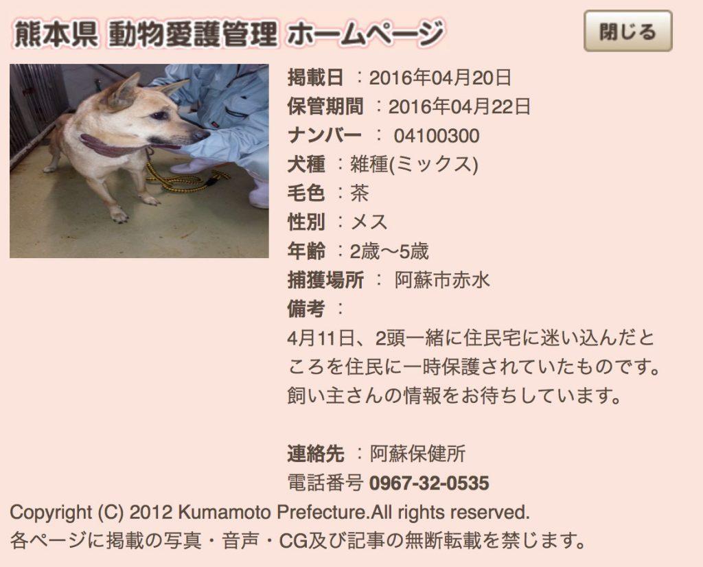 kumamotoken-aiken-search-0420-5