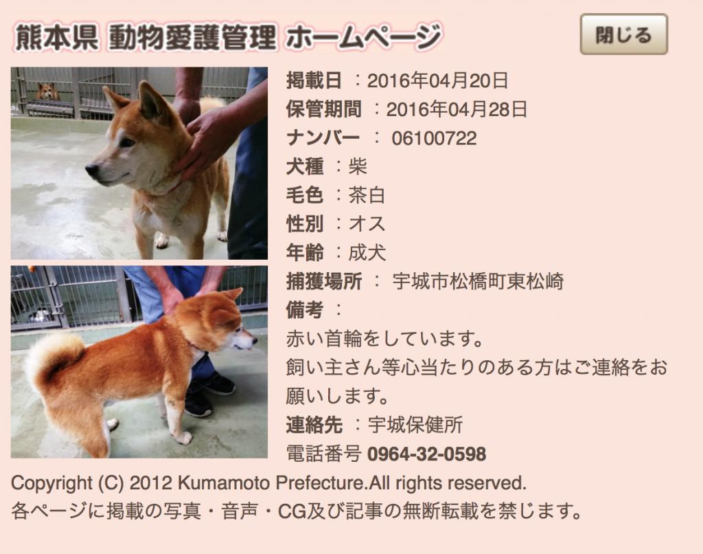 kumamotoken-aiken-search-0420-6