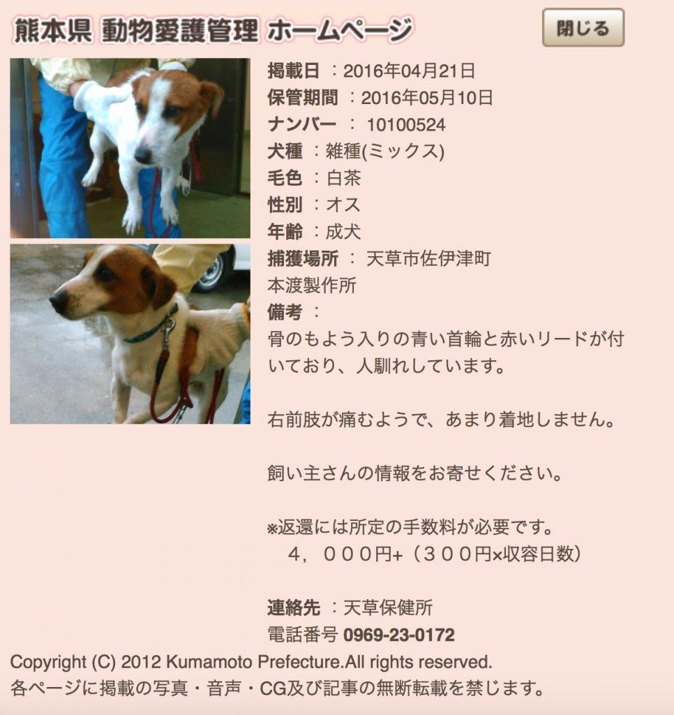 kumamotoken-aiken-search-0421-1