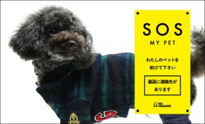 sample_sosmypet