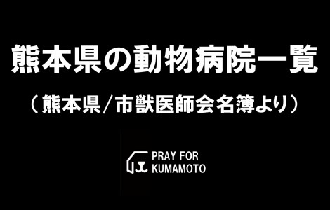 vet-pray-for-kumamoto