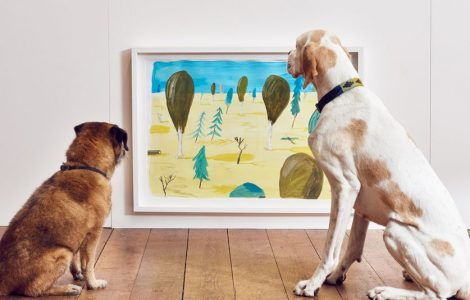 contemporary-art-for-dogs-0
