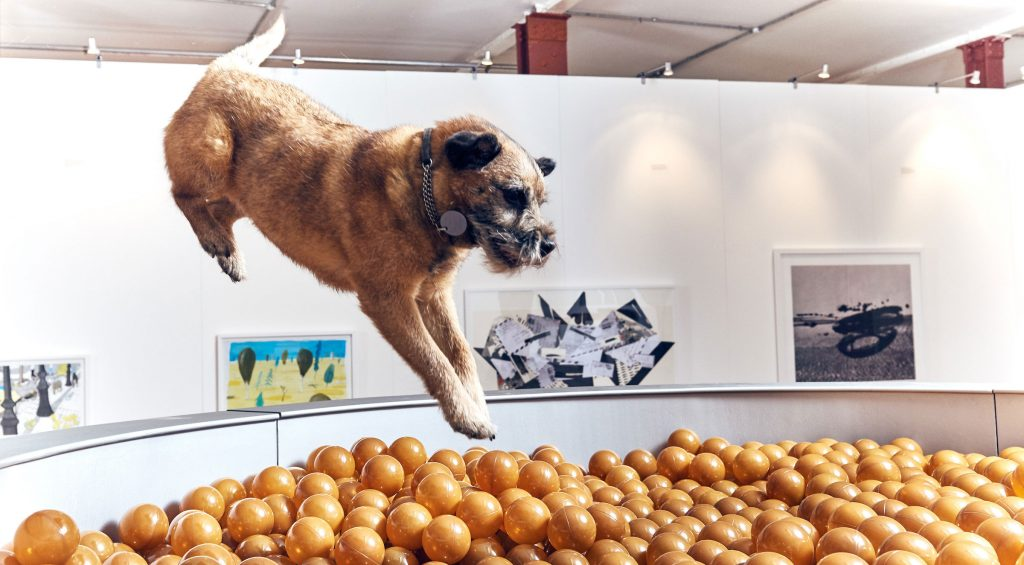 contemporary-art-for-dogs-2