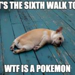 pokemon-go-dog-walking-animal-shelter-muncie-7