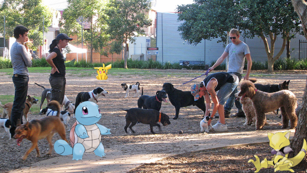 pokemon-trainer-dog-walkers-pokemon-go-620x349